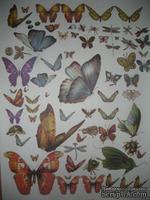 "Бумага для декупажа ""Бабочки"", размер: 28х38 см, ЕВ-Д008"