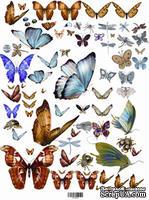"Декупажная карта ""Бабочки"", размер: 29,5х45 см, ЕВ-Д018"