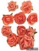 Набор цветов от Kaisercraft - F662, цвет: коралловый, 10 шт.