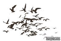 Акриловый штамп FA044 Птицы, размер 5,2 * 3,5 см