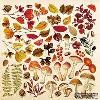 Лист для вырезания Botany autumn, ТМ Фабрика Декору