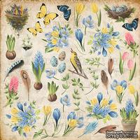 Лист с картинками для вырезания. Набор Botany Spring, ТМ Фабрика Декору