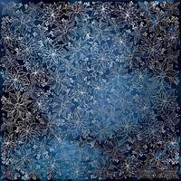 Лист односторонней бумаги с фольгированием Silver Poinsettia Night garden, ТМ Fabrika Decoru