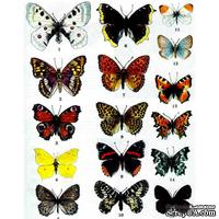 Оверлей - Фабрика Декора -  Бабочки Цветные, размер А4