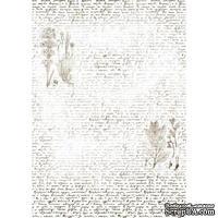 Оверлей Текст с гербарием 21х29,7 см, ТМ Фабрика Декора