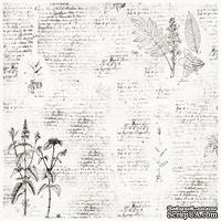 Деко веллум (лист кальки с рисунком) Botany Spring 1, ТМ Фабрика Декора