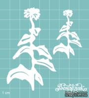 Чипборд от Вензелик - Набор флора 15, размер: 76x85 мм