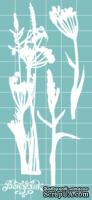 Чипборд от Вензелик - Набор флора 17, размер: 59x119 мм