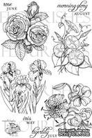Набор акриловых штампов от Flourishes - A Year In Flowers 2 Stamp Set
