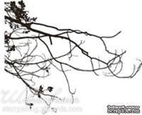Акриловый штамп FL020 Ветви дерева, размер 7,2 * 5,2 см