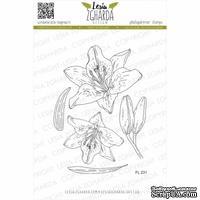 Набор акриловых штампов Lesia Zgharda Лілія FL231