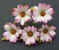 Ромашки цвет: розовый, 45 мм, 5 шт.