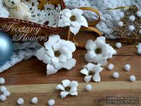 Набор цветов Freetany Flowers – Жасмин