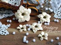 Набор цветов Freetany Flowers – Скромница