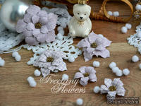 Набор цветов Freetany Flowers – Зима в Провансе