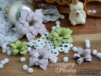 Набор цветов Freetany Flowers – Зимний сад