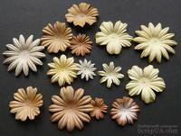 Набор цветов коричневого и белого оттенков, 20-50 мм, 20 шт.