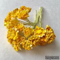 Гипсофила от Thailand - оранжево-желтые, 10 шт