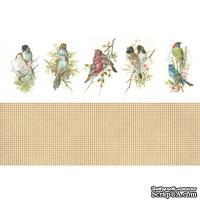 Двусторонний лист с картинками от Galeria Papieru - Ptaszki, 30,5х10см - ScrapUA.com