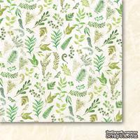 Лист двусторонней скрапбумаги от Galeria Papieru - Лесные мечты 02,30,5х30,5 см - ScrapUA.com