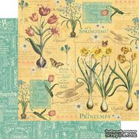 ЦЕНА СНИЖЕНА! Лист бумаги Graphic 45 - Time to Flourish - April Flourish, размер 30х30 см, двусторонняя