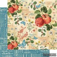 Лист бумаги Graphic 45 - Time to Flourish - September Flourish, размер 30х30 см, двусторонняя