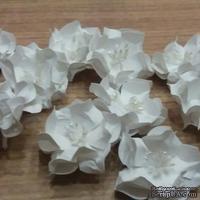 Набор бумажных цветов - Гардении от Scrap Klumba, белые, 5 шт., диаметр 4 см
