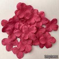 Гортензия, цвет: фуксия, 3,5 см, 20 шт. - ScrapUA.com