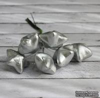 Звезды от Scrapberry's, серебряные, 6шт