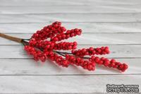 Веточка бузины от Scrapberry's, с красными ягодками