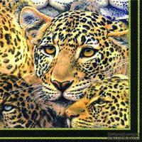 "Салфетка для декупажа ""Леопарды"", цвет фона: черный, размер: 33х33 см"