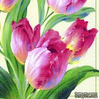 """Салфетка для декупажа """"Тюльпаны, цветение"""", цвет фона: кремовый, размер: 33х33 см"""