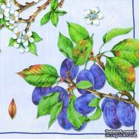 """Салфетка для декупажа """"Ветки спелой сливы и цветущие ветви"""", цвет фона: голубой, размер: 33х33 см"""