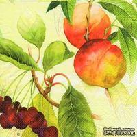 """Салфетка для декупажа """"Персики и вишни на ветвях"""", цвет фона: кремовый, размер: 33х33 см"""