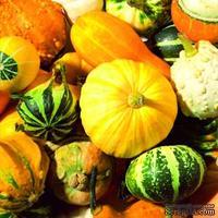 "Салфетка для декупажа ""Осенний урожай"", размер: 33х33 см"