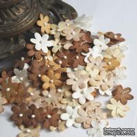 Плоские цветочки, микс цветов: коричневый, 1,5 см