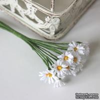 Хризантемы, цветочек 15 мм, стебелек 10 см, 12 шт., B64477