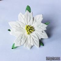 Пуансеттия белая,  большая, диаметр 65 мм, 1 шт. - ScrapUA.com