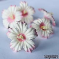 Сакура, 35 мм, цвет бело-розовый, 1 шт.