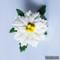 Пуансеттия белая,  маленькая, диаметр 30 мм, 1 шт.