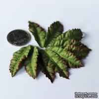 Листики лилии, 45х20 мм, 10 шт.