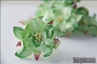 Гардения, диаметр 5 см, цвет зеленый, 1 шт.