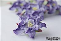 Гардения, диаметр 5 см, цвет фиолетовый, 1 шт.