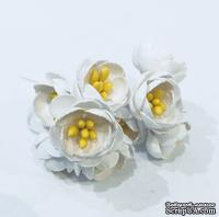 Цветы яблони, 5 штук, диаметр 18-20мм,  цвет - белый
