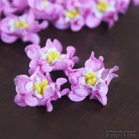 Гардения, цвет: розовый с белым, диаметр 2 см, 5 шт.
