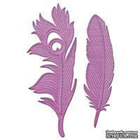 Ножи от Spellbinders - Feathers On The Wind - Перья