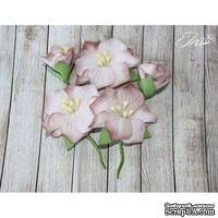 Набор цветов TM Iris - Blossom Бежевые, 5 шт