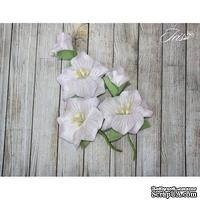 Набор цветов TM Iris - Blossom Сиреневые, 5 шт - ScrapUA.com