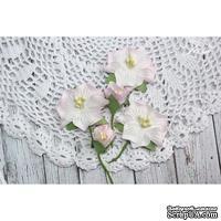 Набор цветов TM Iris - Blossom Розовые, 5 шт