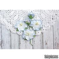 Набор цветов TM Iris - Blossom Голубые, 5 шт